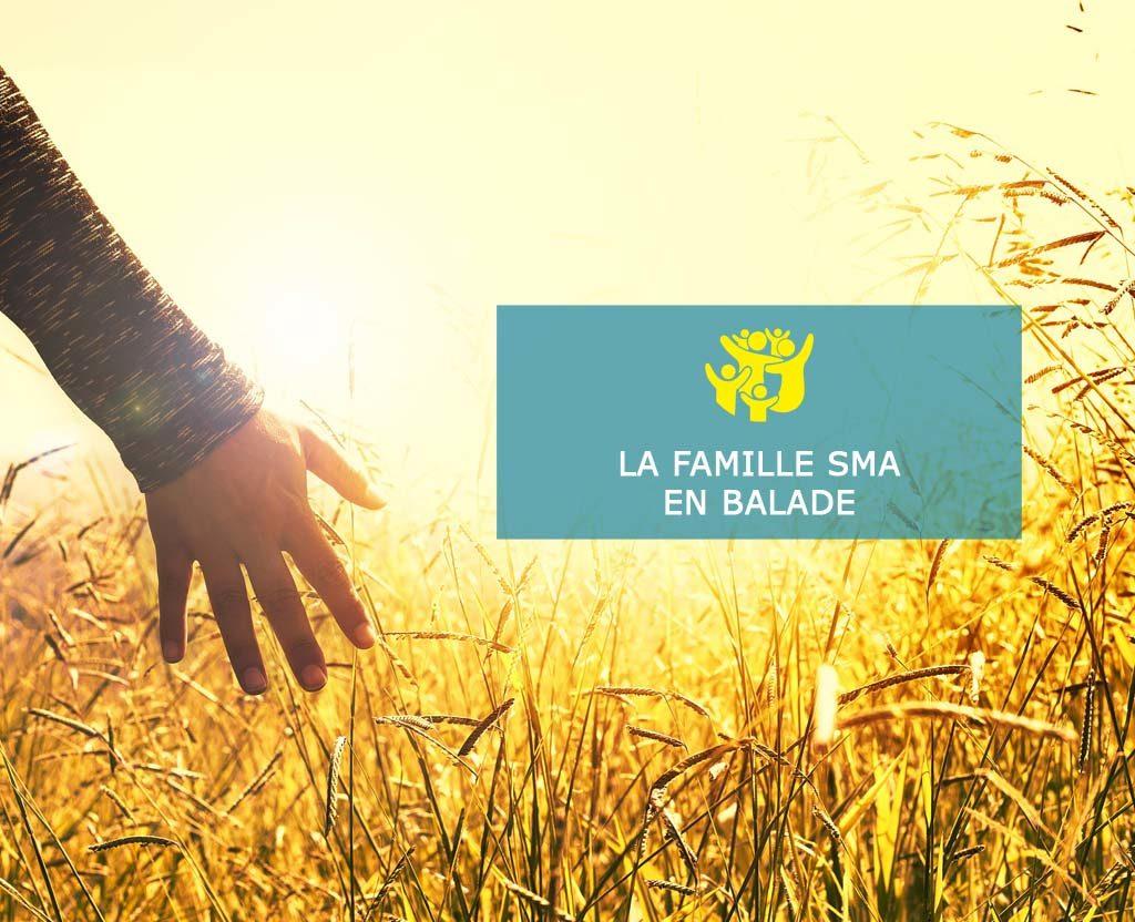 Main champ de blé - Famille SMA
