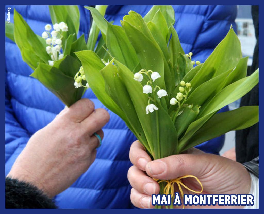Revivez le mois de mai 2020 à Montferrier !